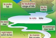 maori posters