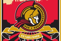 Ottawa Senators / Hockey / by NiceRink.com