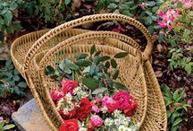 Garden - Flowers / by Darby