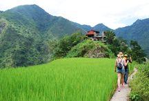 The Philippines / Impression of the Banaue Rice Terraces, Tappiyah Falls, Manilla, Palawan, El Nido, Puerto Princessa and the Underground River.