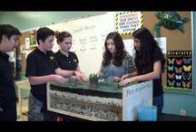 1 School Gardens GREEN STEM