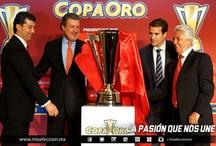 Copa Oro 2013 / El torneo será del 7 al 28 de julio 2013 en Estados Unidos.