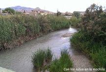 Archena (Comunidad de Murcia)