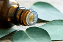 Doterra Essential Oils / by Lorilee Moore Madoneczky