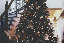 Christmas / Gifts // Lights // Pine // Festive
