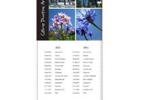 Les calendriers 2015 de Céline Photos Art Nature