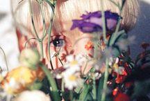 Photography - Aperture & focus