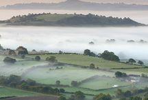 misty morning / landscape nature