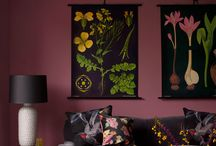 .deco / by Nathalie Hosey