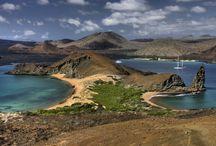 Ilhas Galápagos / Galápagos renasceu como um dos destinos mais atraentes da atualidade. Não apenas pela beleza de seus mares, desertos e bosques, o arquipélago instiga também pela importância histórica, por ter sido o laboratório vivo dos estudos de Charles Darwin. Com biodiversidade riquíssima, as ilhas são perfeitas para a prática de mergulho, pois abrigam animais selvagens que não existem em nenhum outro lugar do mundo.