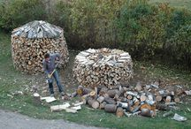 Logging / by Emmanuel Hanley