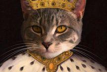 gatos reyes del mundo