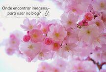 Dicas para blogueiras: crescimento, engajamento nas redes / Faça seu blog crescer: veja dicas de divulgação, engajamento nas redes sociais, otimização e personalização de blogs.