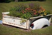 Green Grass, Growing Garden & Fabulous Flowers  / by Michelle Schock
