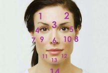 les zones du visage