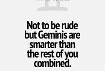 the gemini me