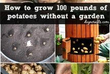 +gardening | growing food