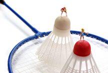 Miniature Sport