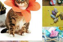 sew cat stuff