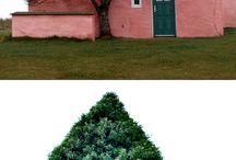Ağaçlar bahçe