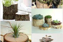 Holz und Pflanzen