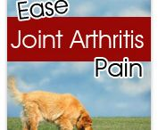 Joint & Arthritis Supplements / Joint care products for cats and dogs / by EntirelyPets.com