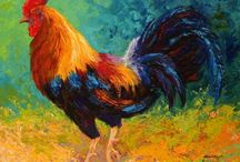 Chickens / by Nicole Clouser