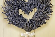 Lavender / Perfume, color, meaning...