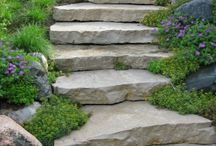 Home: Front Steps & landscaping / by Hannah Carbonneau