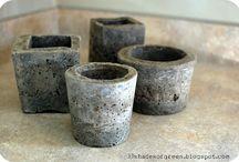 sukulenty i cement