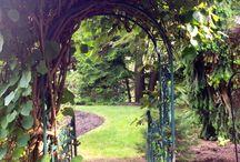 Nature: Gardens and Woods. / Tuinen, bossen .en Natuur.