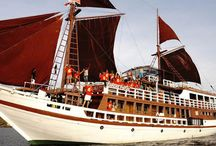 Boat Charter / We offering Komodo Boat Charter with special discount rate for reservation with us. Find and get your boat at http://www.gokomodotours.com/komodo-boat-charter