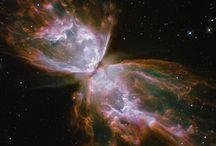 Astronomy / by Brenda Brunton