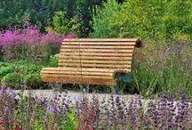 Garden/ Piet Oudolf
