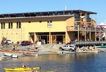 Economic Impacts / What can a bigger, better marine discovery center do for Port Angeles and the Olympic Peninsula?