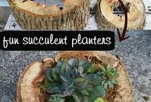 Plant pot / Wooden