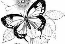 Rysunek motyle