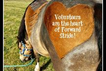 We love our Volunteers! / Our Volunteer Program provides many ways to support Forward Stride, learn a lot, and be part of our community through helping with horse care, in therapy sessions, with facility projects, and more.