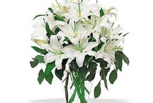 Sympathy & Funeral / Are you looking to send Sympathy & Funeral flowers to Inglewood and areas around Inglewood? Browse through the finest collection of Sympathy & Funeral flower arrangements below.