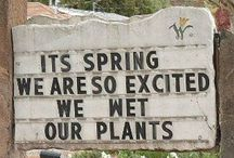 Garden Signs/Quotes