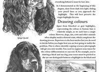Drawing info and books / by Toni South