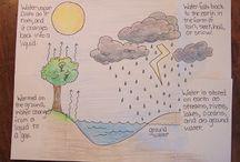 vzdělávání příroda