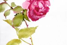 Flowers / by Sherry Baber