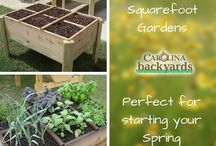 OUTDOORS :: Gardening Ideas / Check out our board full of easy and creative gardening ideas for Winter, Spring, Summer and Fall!