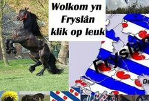 FRIESLAND ~ FRISIA / Die Waddeneilande (The Netherlands) / Friesland en Die Waddeneilande: TEXEL, VLIELAND, TERSCHELLING, AMELAND en SCHIERMONNIKOOG.