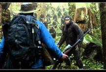 @GRATUIT@ La Planète des singes  l'affrontement Streaming Film en Entier VF Gratuit~