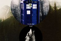 Doctor Who / Bad Wolf / by Morgan J