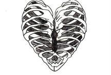 Скелеты. Кости. Органы.