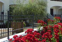 Residence / Solo i Residence più belli di Pineto per le vostre vacanze