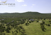 Andersson's Camp - Namibia - Wilderness Safaris / Andersson's Camp is a family camp with a sensational waterhole, with a good chance of seeing some of Ongava's famous white and black rhino - in amongst a variety of other game.